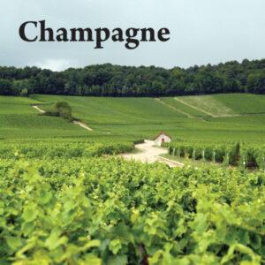 pacchetto champagne samuel cogliati possibilia editore